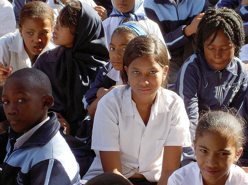 The Rise of South Africa's Education Adequacy Movement