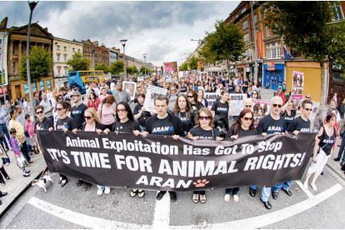 Animal Defenders International v UK:  A Case of Fruitful Dialogue, or of Strasbourg Losing its Nerve?