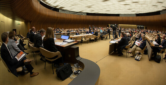 States are Bound to Consider the UN Human Rights Committee's Views in Good Faith