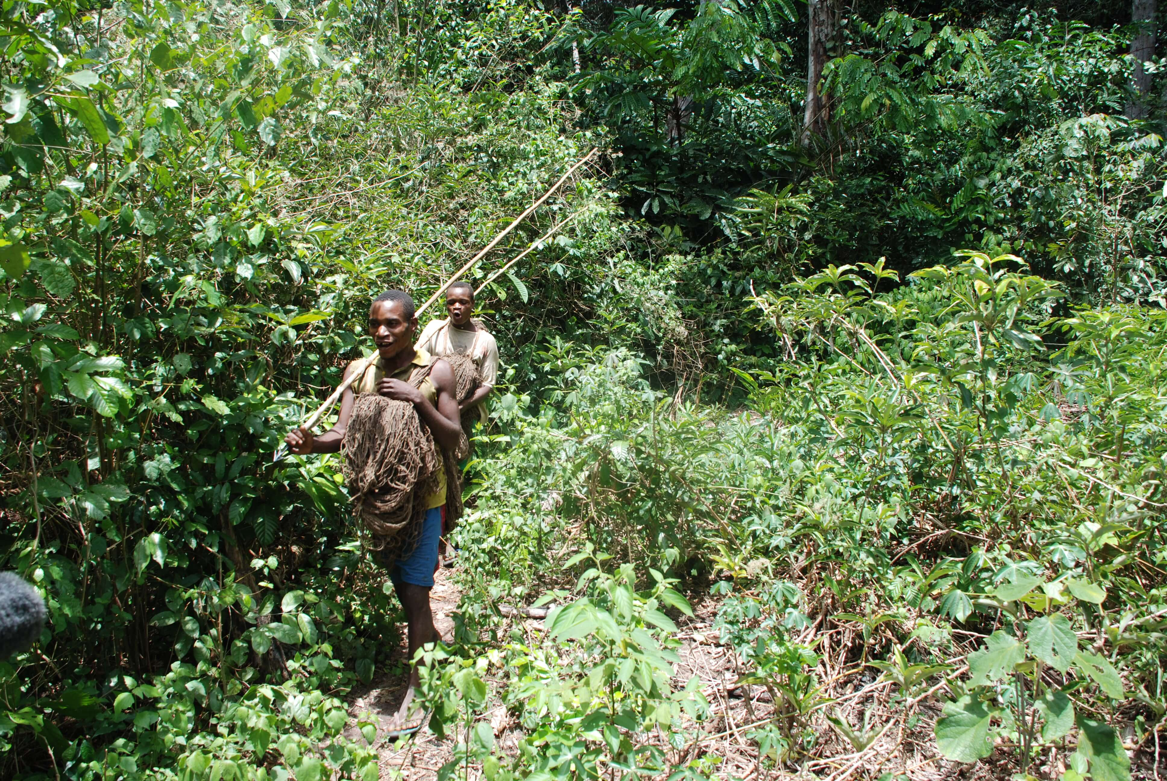 Sustainable Conservation: The Rights-Based Way to Save Africa's Rainforests