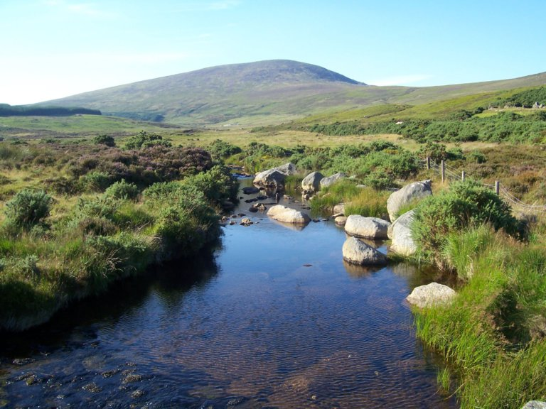Irish High Court rules Constitution protects a 'Right to an Environment'