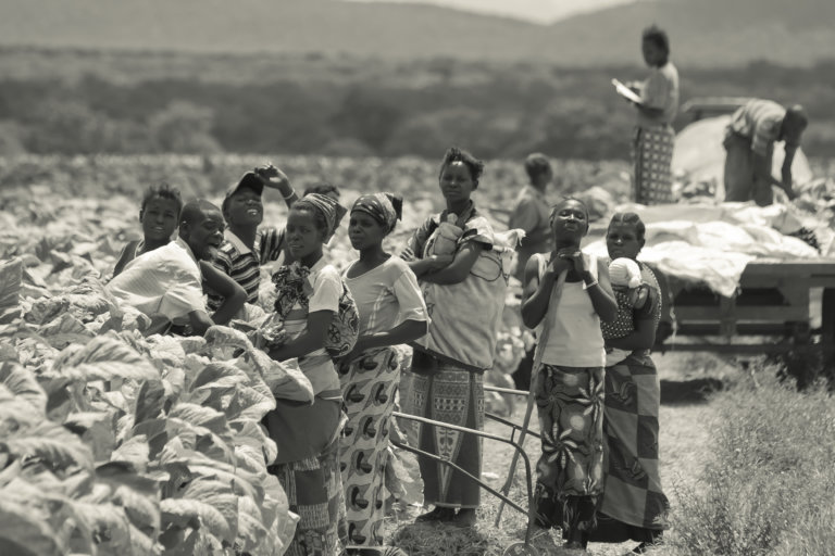 Governance Gaps Lead to the Displacement of People Living in Rural Communities in Zambia