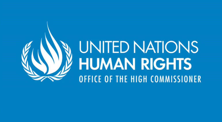 Animated Films of UN Treaty Body Rights
