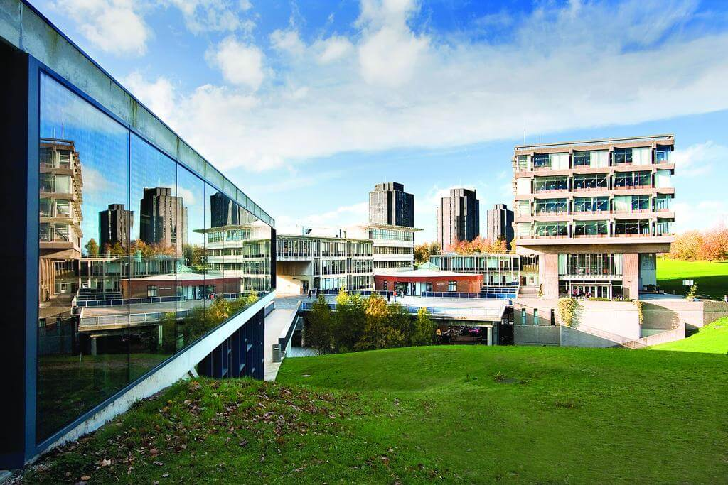 Position of Senior Lecturer, Reader or Professor in International Human Rights Law at the University of Essex