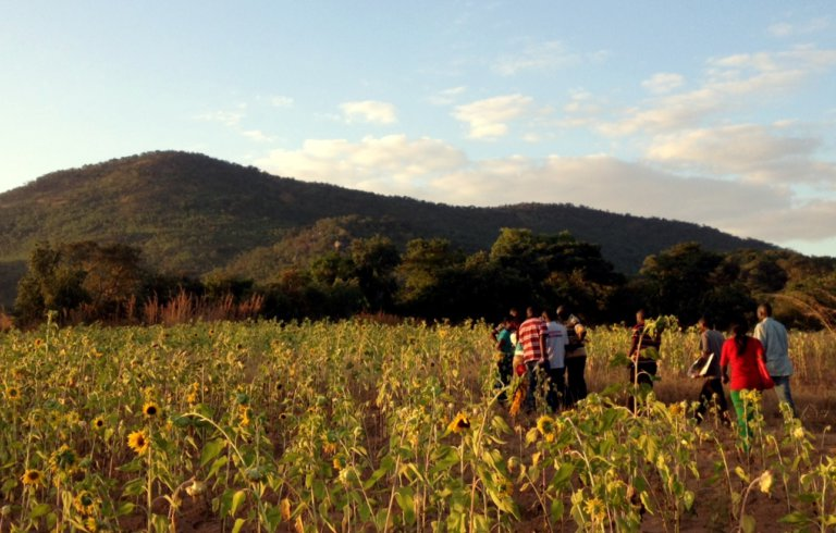 Legal Gaps in Securing Customary Land Rights in Zambia