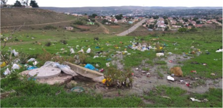 Using Human Rights Law to Address the Sanitation Crisis in Makhanda