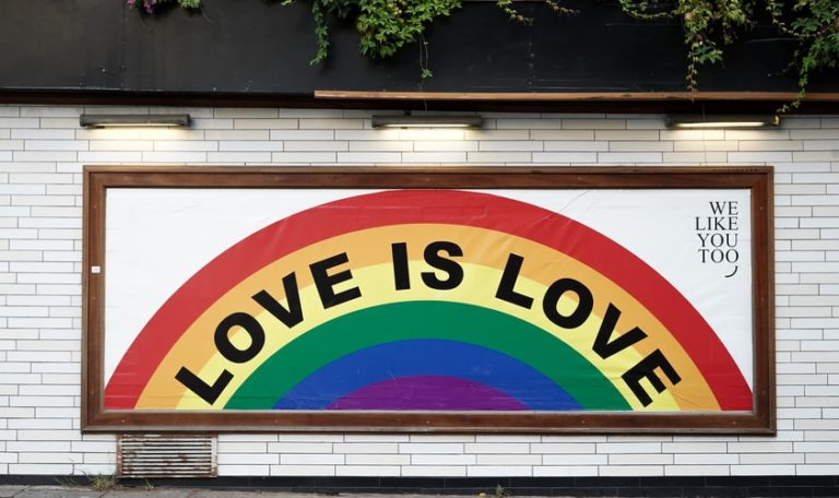 A Gay Kiss on the Internet: Can Strasbourg Litigation Help Win the War Against Homophobia?