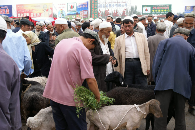 The China Cables –  Dehumanisation of  Uyghurs and the Need for International Censure