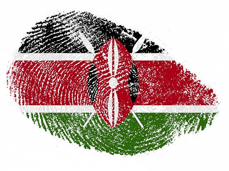 High Court of Kenya suspends implementation of biometric ID system