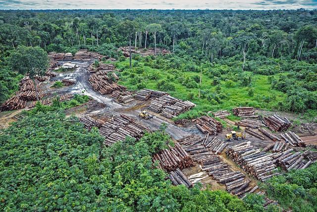 IEA v Brazil: Rights-Based Climate Litigation to Protect the Brazilian Amazon