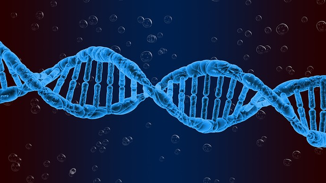 Creation of a Genetic Bank in India: Unconstitutional and Threat to Human Rights