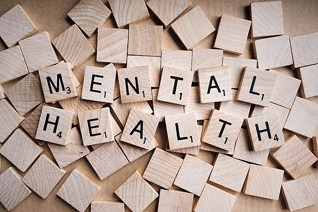 The Violation of Human Rights of Women in Mental Healthcare Institutions
